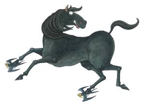 horse_lowres