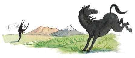 horsebucking_lowres