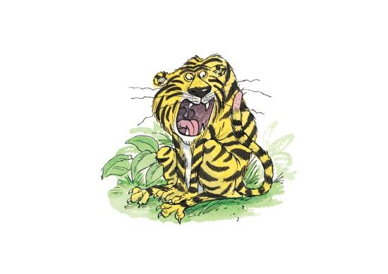 Tiger lo res