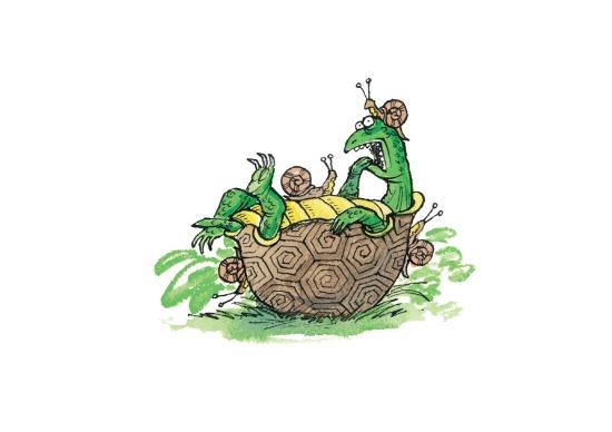 Turtle lo res