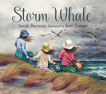Storm Whale cover