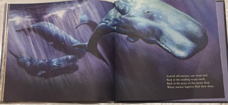 Illustration from Jane Tanner's Storm Whale