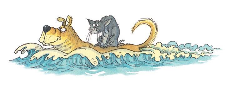 Desmond saving cat