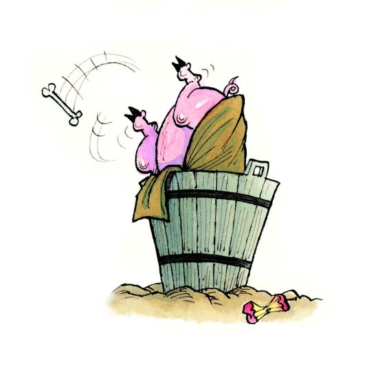 the pig in the bucket_lo res