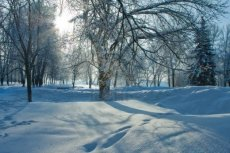 beautiful-nature-winter